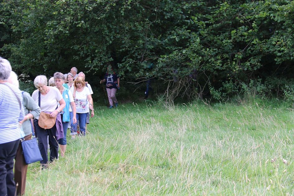 Pilgrimage Day 9 Slowly the pilgrims emerge from the dark woods near Silchester