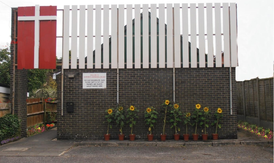 "<strong><span style=""font-size: 12pt; color: #ff0000;\"">Sunflowers lighting up the front of Kempshott Church</span></strong>"